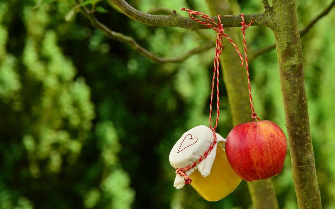 Monodiète : Recettes à base de pommes